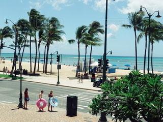 ハワイの写真・画像素材[2610045]