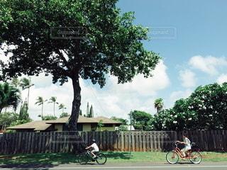 ハワイ 地方 田舎 移住 自然 自転車 サイクル サイクリングの写真・画像素材[2610055]
