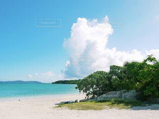 沖縄 石垣島の写真・画像素材[2612530]