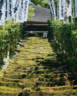 鎌倉 お寺の写真・画像素材[2613402]
