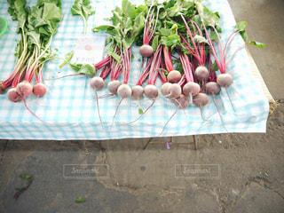 鎌倉野菜 野菜 おいしい 食材の写真・画像素材[2614913]