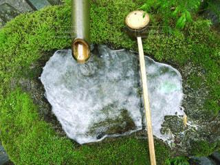 京都 庭 つくばいの写真・画像素材[2615040]