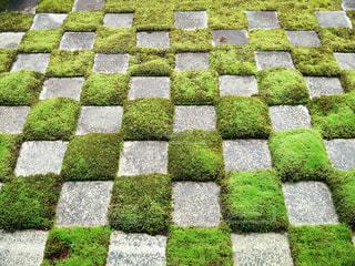 京都 東福寺 苔 庭の写真・画像素材[2615098]