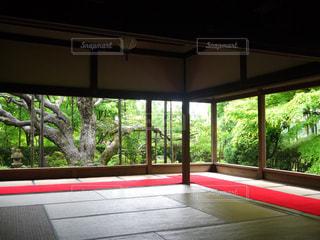京都 宝泉寺 お寺 縁側 庭の写真・画像素材[2615105]