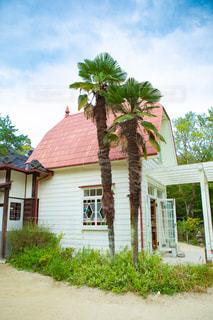 サツキとメイの家の写真・画像素材[2619261]
