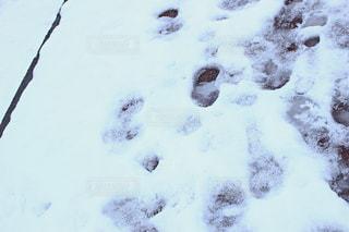 近く雪に覆われたフィールド - No.958833