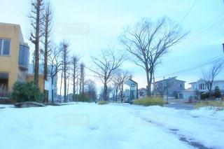 雪に覆われたみちの写真・画像素材[958862]