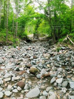 岩の道の写真・画像素材[2298223]