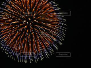 長岡花火の写真・画像素材[2616096]