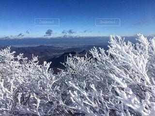 札幌岳の写真・画像素材[2723871]