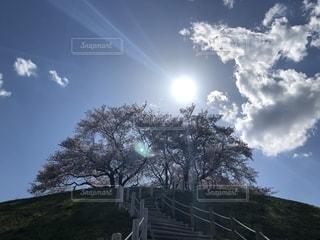 太陽に照らされる古墳と桜の写真・画像素材[2640839]