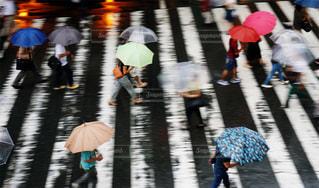 雨模様の写真・画像素材[2623080]
