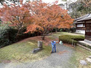 庭に立っている人々のグループの写真・画像素材[2821691]