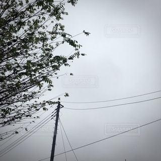 曇りの日の空の写真・画像素材[2623456]