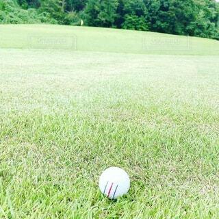 ゴルフ場の風景の写真・画像素材[3691497]