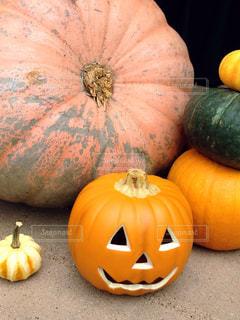 秋の写真・画像素材[211679]