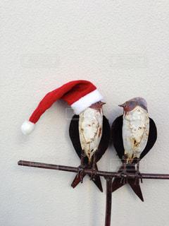 メリークリスマス!の写真・画像素材[283936]