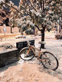 都会の雪の写真・画像素材[972304]