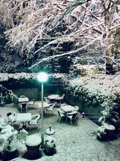 雪景色の写真・画像素材[1566309]