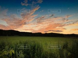 風景の写真・画像素材[2624608]