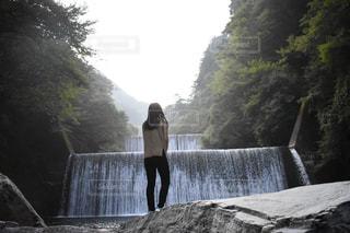 自然の写真・画像素材[2625079]
