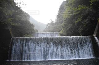 自然の写真・画像素材[2625080]