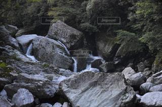 自然の写真・画像素材[2625125]