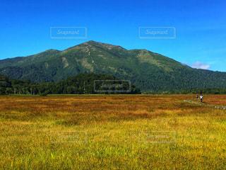 草紅葉と至仏山の写真・画像素材[2632522]