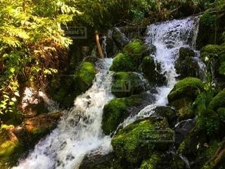 清流の滝の写真・画像素材[2682167]