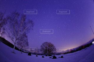 雪上の星の写真・画像素材[1357571]