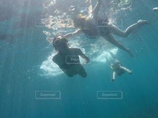 泳ぐの写真・画像素材[2642135]
