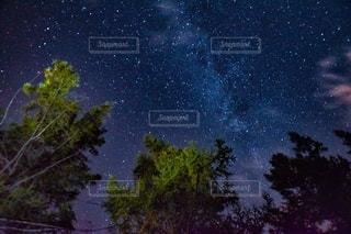 北海道 マイルドセブンの丘からの星空の写真・画像素材[2642297]