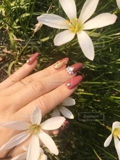 花と爪美しいハンドネイルの写真・画像素材[2662353]