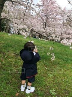 子どもの写真・画像素材[46432]