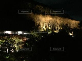 夜の写真・画像素材[122936]