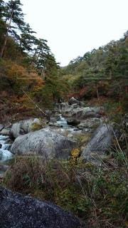 滝の隣の丘の中腹を近づけるの写真・画像素材[2681593]