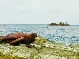 日本海っ🎵の写真・画像素材[2654779]
