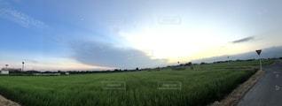夕空  夏の写真・画像素材[2660718]