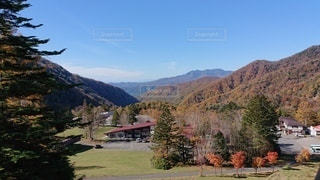 山を背景にした木の写真・画像素材[2684297]