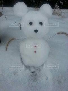 雪の写真・画像素材[105495]