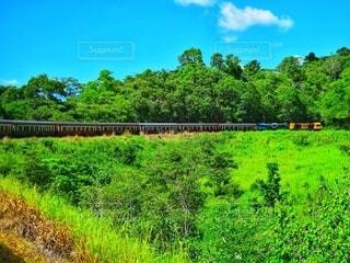 緑豊かな野原を通る列車の写真・画像素材[2684423]