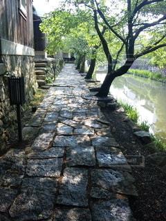 水の都、近江八幡の写真・画像素材[2748990]
