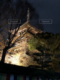 山を背景にした木の写真・画像素材[2853165]