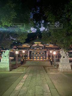 夜の穴八幡の参道と社殿の写真・画像素材[2664068]