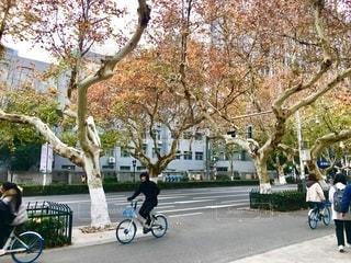 自転車の写真・画像素材[2671228]