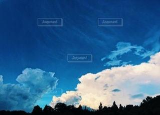 自然の写真・画像素材[2672324]