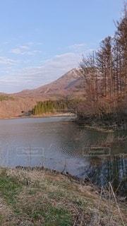 森を流れる川の写真・画像素材[3145031]