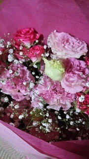 花束の写真・画像素材[3297842]