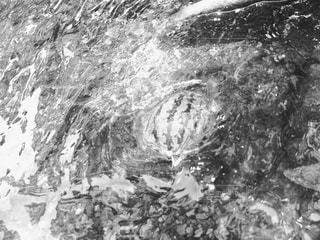 スイカの写真・画像素材[2686161]