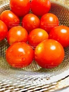 たくさんのミニトマトの写真・画像素材[3332400]